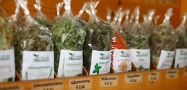 Salzburg_markten-biomarkt.jpg
