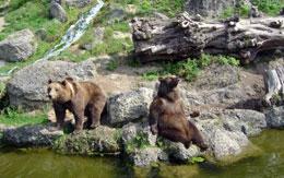 Salzburg-hellbrunn-dierentuin