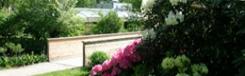 botanische-tuin-salzburg