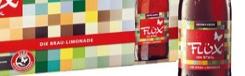 flüx-stiegl